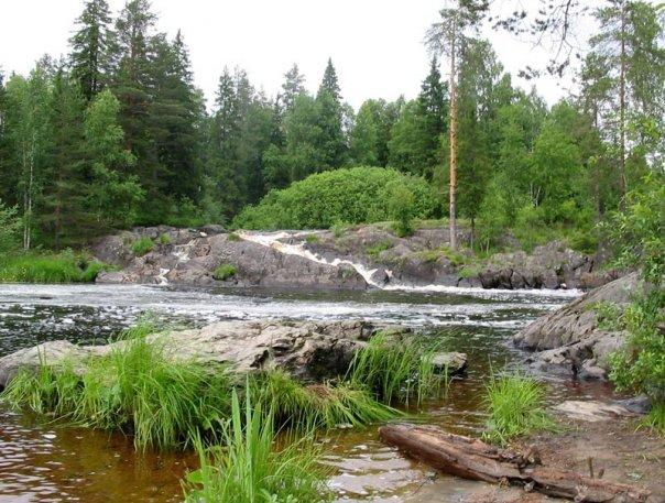 южные озера чеховский район платная рыбалка